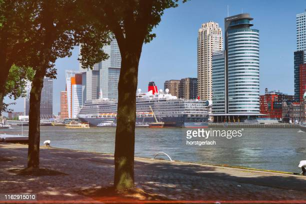 kop van zuid, rotterdam, netherlands - meuse river stock photos and pictures