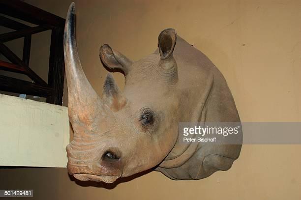 Kopf von ausgestopftem Nashorn Bar vom Glen Afric Country Lodge Hartbeespoort bei Pretoria Südafrika Afrika Reise BB DIG PNr 240/2006