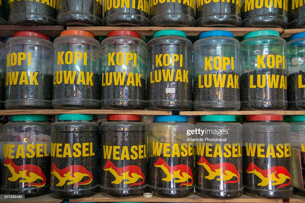 Kopi Luwak Coffee For Sale Coffee Beans Eaten And Digested ...