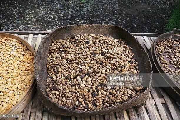 Kopi Luwak (Special Coffee)