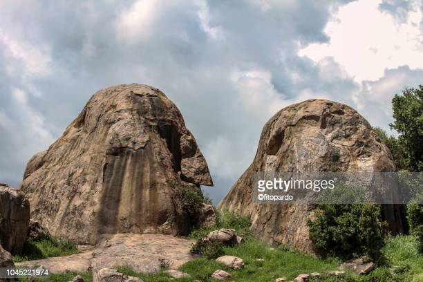 koppie or inselberg in the serengeti - east africa stock photos and pictures