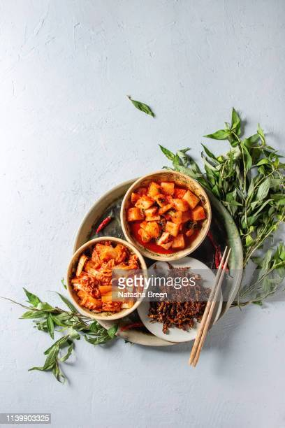 korean appetizer kimchi - fermenting stock pictures, royalty-free photos & images
