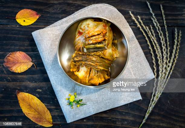 korea's representative health food kimchi - jong heung lee stock pictures, royalty-free photos & images