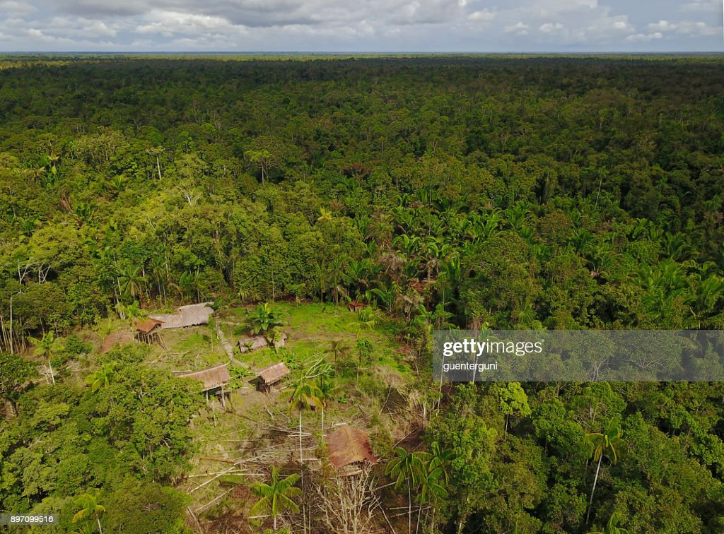 Picture of: Korowai Tree Houses In A Jungle Clearing Westpapua Indonesia High Res Stock Photo Getty Images