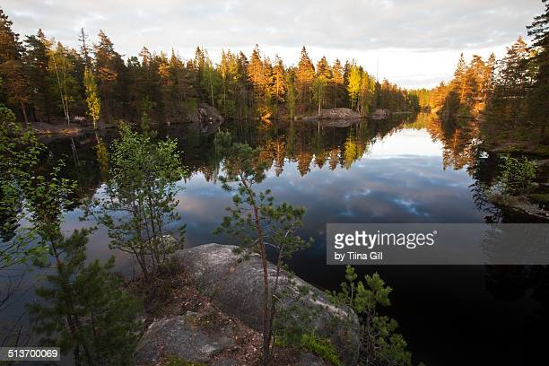 korpilampi lake in evening sun - espoo stock pictures, royalty-free photos & images