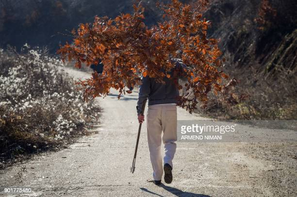 Kosovo Serbs carrying oak branches walk in the village of Kishnica on January 6 2018 ahead of the Orthodox Christmas Day which is celebrated...
