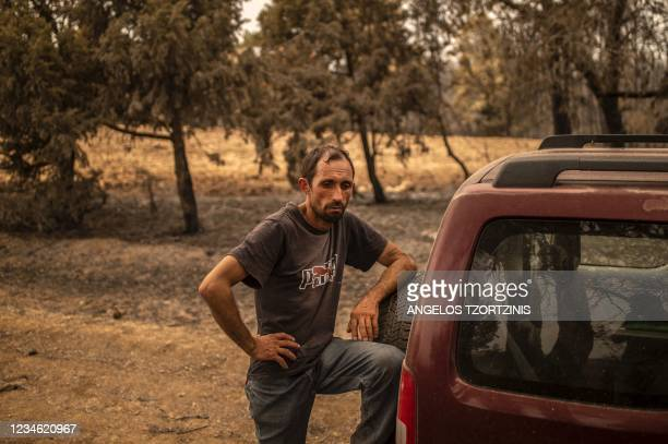 Kostis Angelou shepherd who lost a herd of 372 animals, stands next to his car in a forest following a wildfire near Kerasia Village on Evia island,...