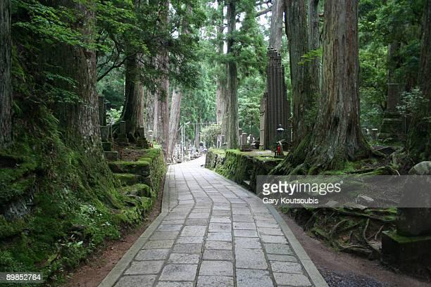 koyasan cemetery, japan - koyasan stock-fotos und bilder