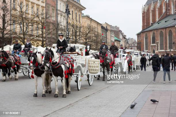 krakow, poland rynek glówny town square with horsedrawn carriages - horse easter stock pictures, royalty-free photos & images