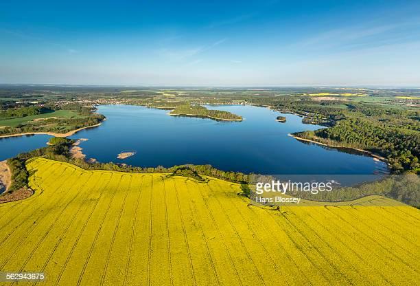 Krakower Seenlandschaft, lakeland nature reserve, with rape fields in full bloom, Kuchelmiss, Mecklenburg Lake District, Mecklenburg-Western Pomerania, Germany