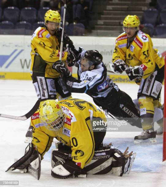 Krefeld's goal-keeper Reto Pavoni catches the puck in front of Hamburg's Marc Beaucage during the DEL Bundesliga play off qualification game between...