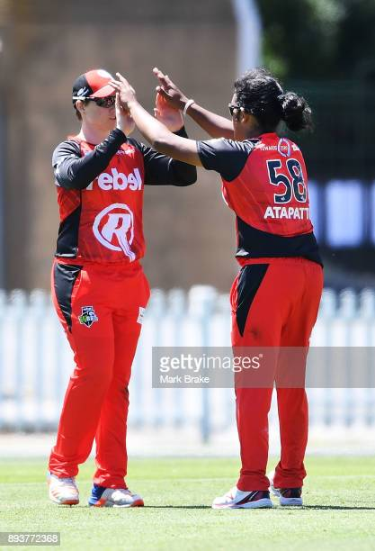 Kris Britt of the Melbourne Renegades and Chamari Atapattu of the Melbourne Renegades celebrate a wicket during the Women's Big Bash League match...