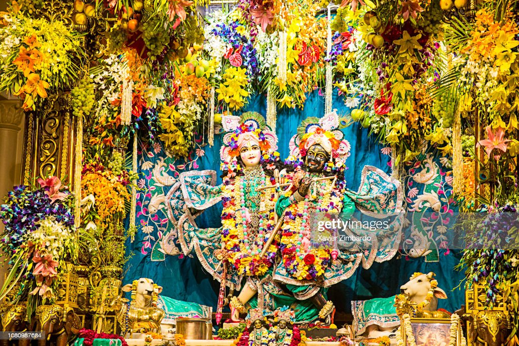 krishna and radha murthis with flowers in iskcon vrindavan temple on picture id1080987684