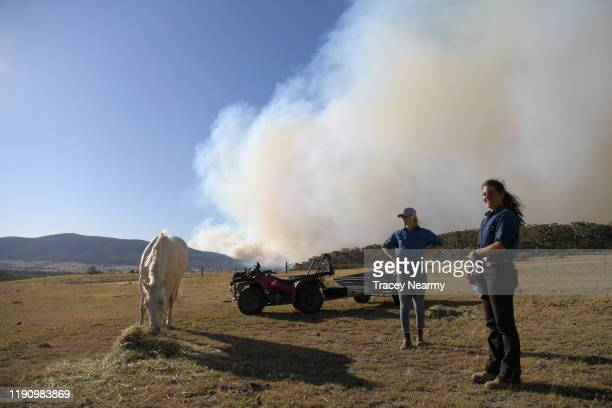 Kristen Amicair of Mick Mason's Horses feed their horses as they keep watch over their property and livestock as firefighter battle to contain spot...