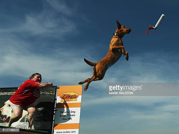 Kristi Baird watches as her dog 'Echo' leaps into the water to record the distance of his jump during the Dock Dogs West Coast Challenge in...