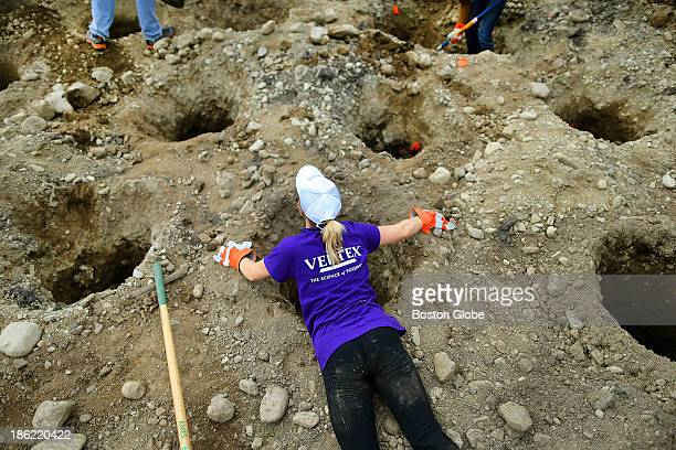 Kristin Lawhorn from Woburn who works for Vertex lays over one of 300 dug holes to remove rocks at the start of a communitywide effort to build a new...