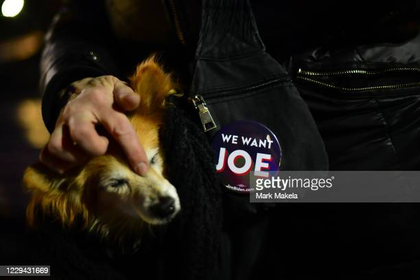 """Kristin Reid wears a """"WE WANT JOE"""" campaign pin and carries her dog as Democratic vice presidential nominee Sen. Kamala Harris speaks at a drive-in..."""