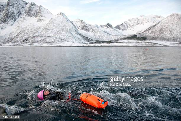 Kristin Roenningen swimming on February 13 2016 in Svolvar Norway Athletes choose to swim in a drysuit due to the cold water in the fjord The water...