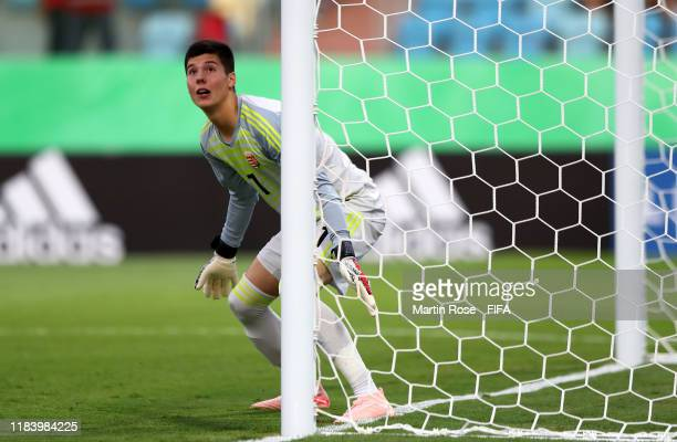 Krisztian Hegyi goalkeeper of Hungary in action during the FIFA U17 World Cup Brazil 2019 Group B match between Nigeria and Hungary at Estadio...