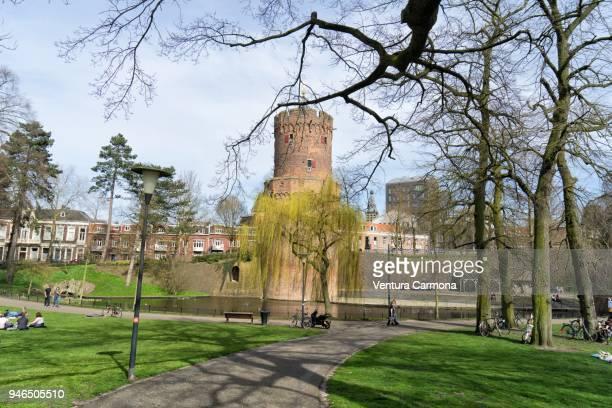 kronenburgerpark in nijmegen - the netherlands - nijmegen stock pictures, royalty-free photos & images