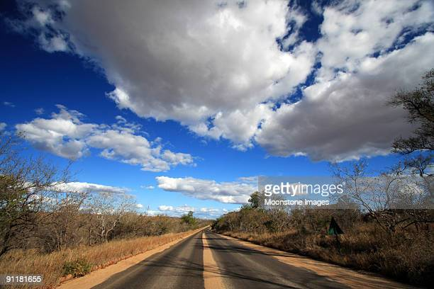 kruger national park in mpumalanga, south africa - mpumalanga province stock pictures, royalty-free photos & images