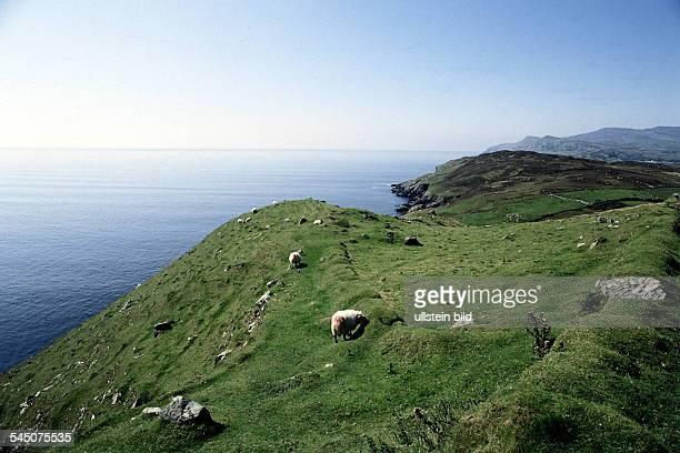 Küstenlandschaft im Donegal 1994