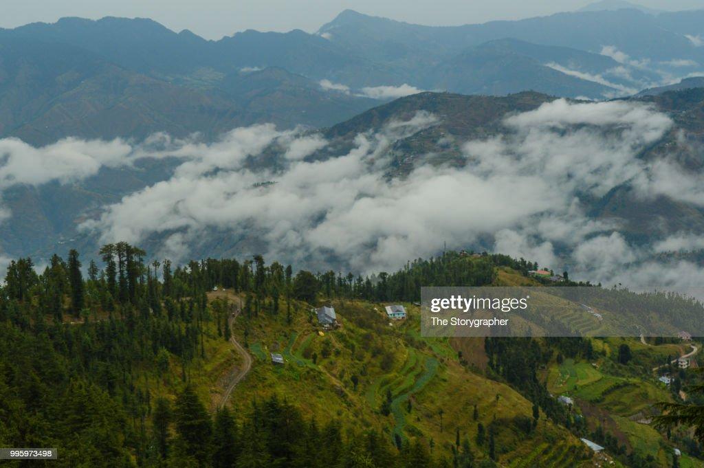 Kufri, Himachal Pradesh : Stock Photo