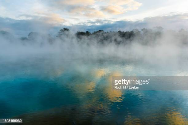 kuirau park, rotorua - geothermal area in central rotorua - hot spring stock pictures, royalty-free photos & images