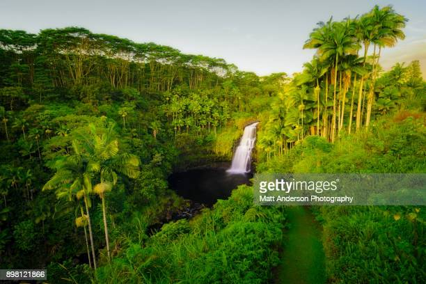 kulaniapia falls #1 - hawai fotografías e imágenes de stock
