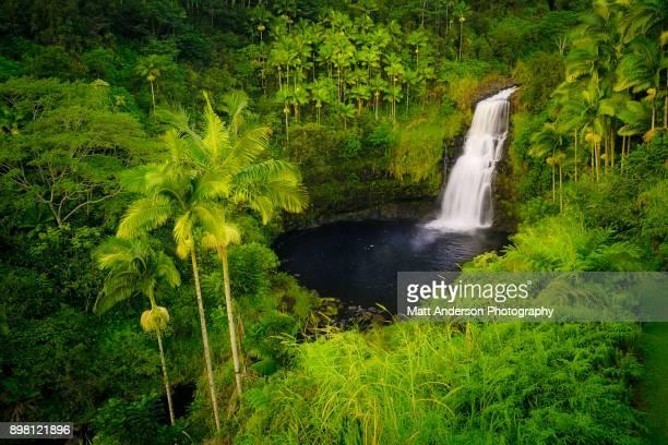 Kulaniapia Falls #2
