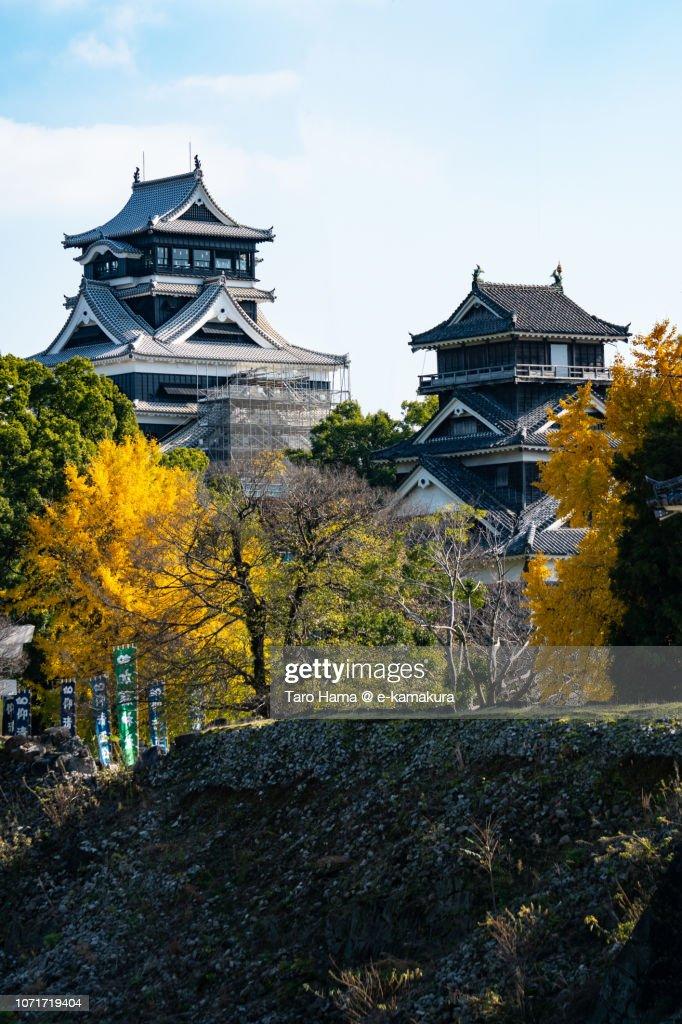Kumamoto Castle in Kumamoto city in Japan in Autumn : Stock Photo