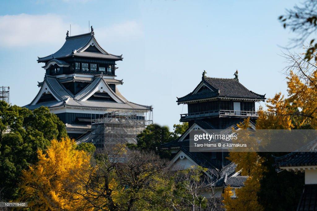 Kumamoto Castle in Kumamoto city in Kumamoto prefecture in Japan in Autumn : Stock Photo