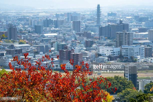 Kumamoto city in Japan in Autumn