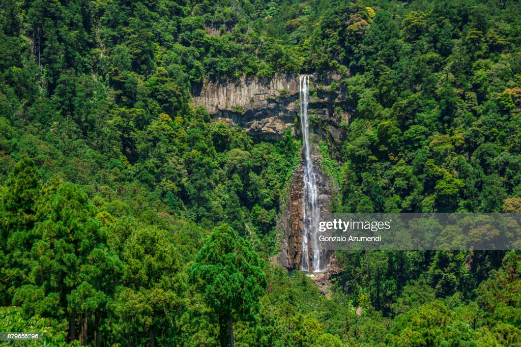 Kumano Kodo pilgrimage route in Japan : Stock Photo