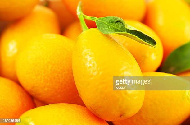 kumquats - loops7 stock photos and pictures