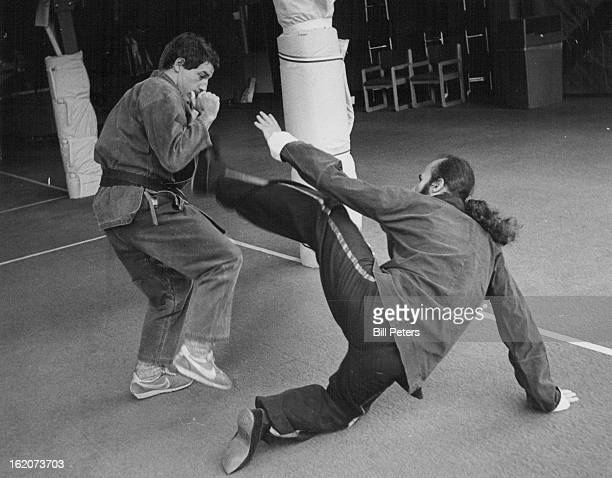 Kung Fu And Karate Techniques Are Featured at Festival; Richard Levin, left, and Ron Rosen demonstrate the style differences.;