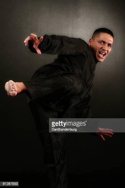 kung fu ataque - kung fu fotografías e imágenes de stock