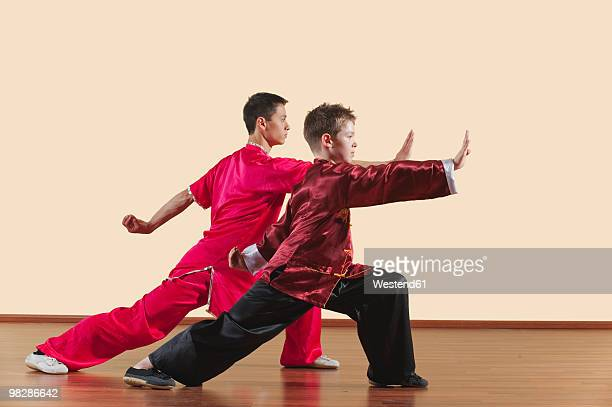 kung fu, changquan, gongbu goushou tuizhang, long fist style, kung fu instructor and boy (10-11) - kung fu stock photos and pictures