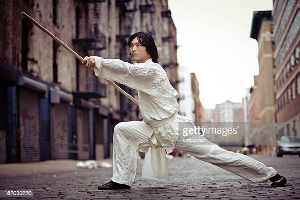 Kung fu martial artist training in an alley