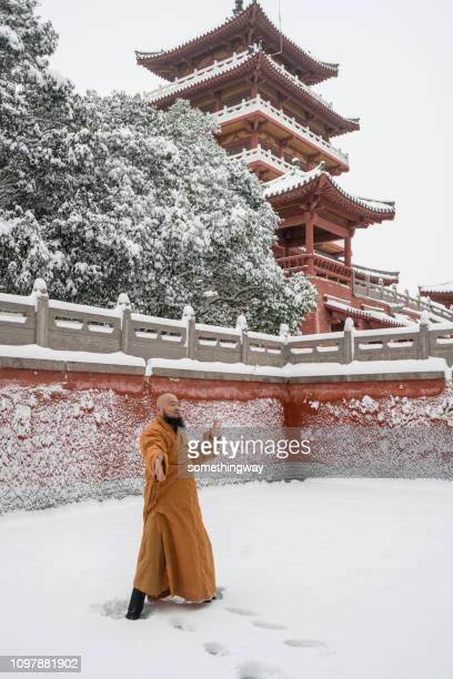 kung fu monk warrior in shaolin temple china - henan province stock pictures, royalty-free photos & images