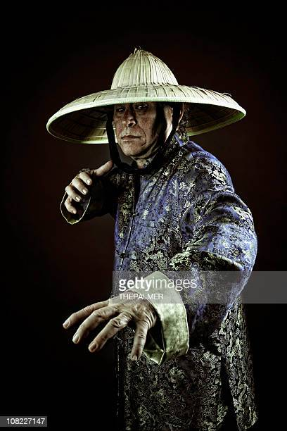 kung fu - kung fu stock photos and pictures