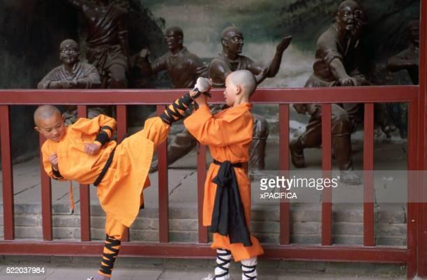 Kung Fu Students Training