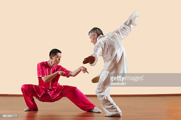 kung fu, tanglangquan, duilian, praying mantis style, two men doing kung-fu moves - kung fu stock photos and pictures
