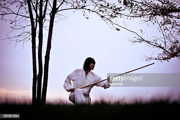 kung fu warrior in training at sunset - kung fu stock photos and pictures