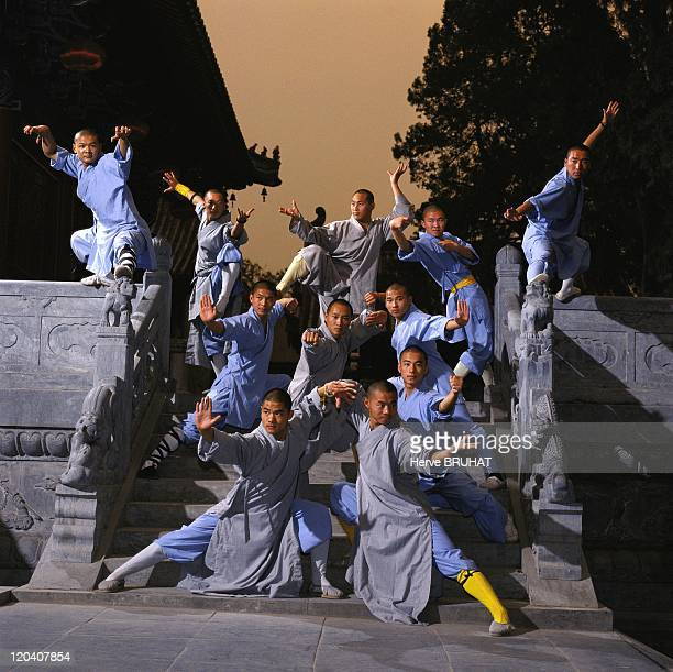 Kungfu and Buddhism at the Shaolin temple, China - The monks are doing postures borrowed from the different Shaolin boxing. Most are inspired from...