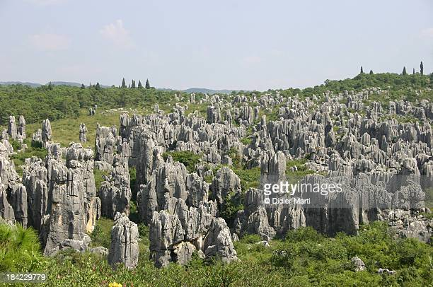 kunming stone forest - kunming stock photos and pictures