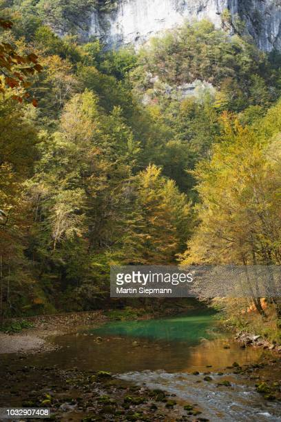 kupa source, kupa river, risnjak national park, gorski kotar region, croatia - rio kupa - fotografias e filmes do acervo