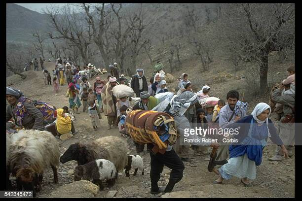 Kurdish refugees in the mountains located in northern Iraq just before the Turkish border