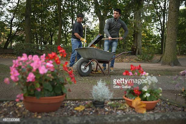 Kurdish Syrian asylumapplicants Mohamed Ali Hussein and his cousin Sinjar Hussein sweep leaves at a cemetery in Gieshof village for which they...