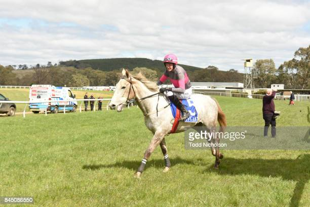Kuridala ridden by Shane Jackson goes out for the Helloworld Portland Maiden Hurdle at Casterton Racecoure on September 10 2017 in Casterton Australia